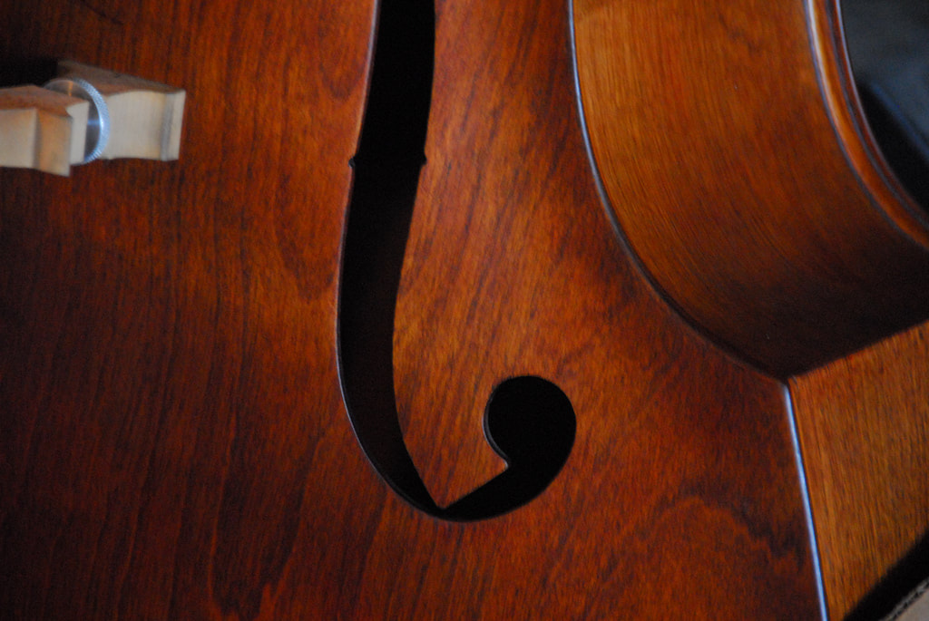 Private Upright Bass Lessons - Academy of Fine Arts